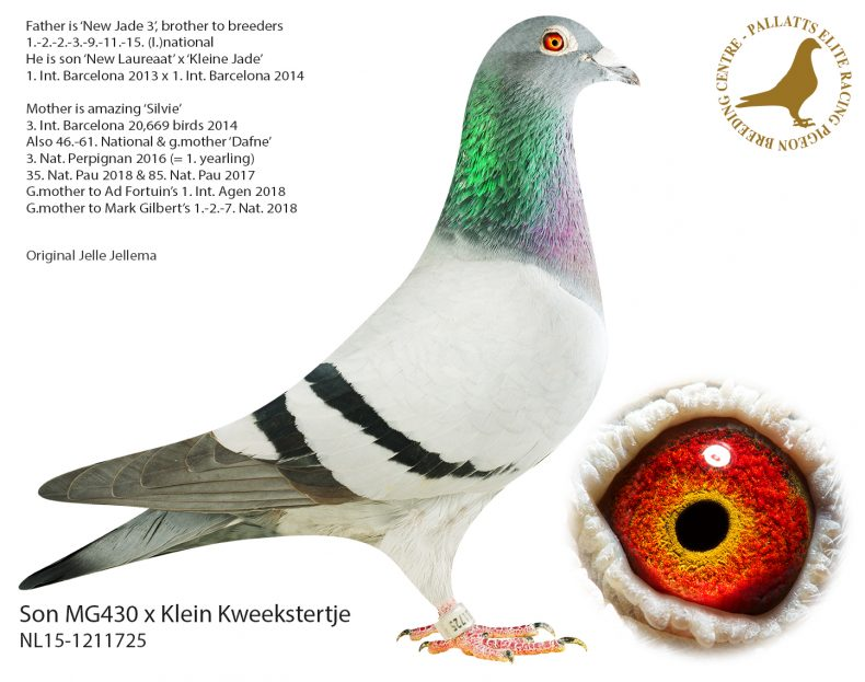NL15-1211725